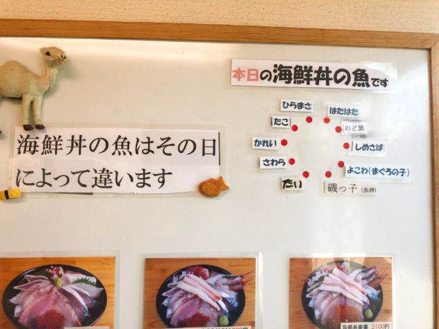 本日の海鮮丼の魚