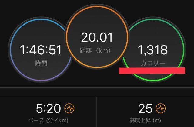 20kmランニングの消費カロリー