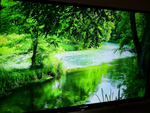 YouTubeで自然風景動画を見る